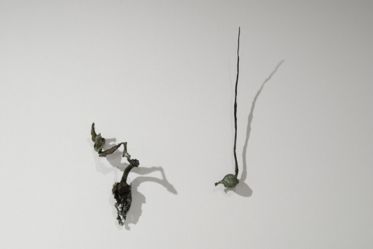 Doubt's Garden (installation detail (II)) 2009<br />Bronze 12cm (H) x 7cm (W) x 3cm (D) and 31cm (H) x 3cm (W) x 2cm (D)<br />Photographer Paul Litchfield